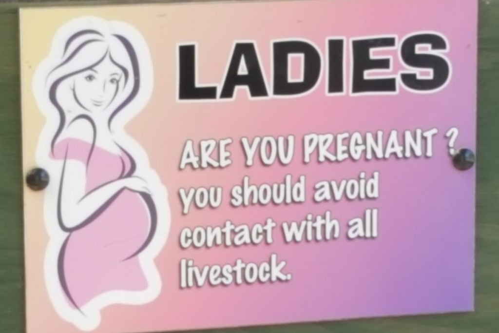 sign reading Ladies are you pregnant? You should avoid contact with all livestock