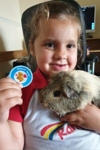 little girl in Rainbow uniform holding a circle badge saying rainbow lover and a tan and white guinea pig